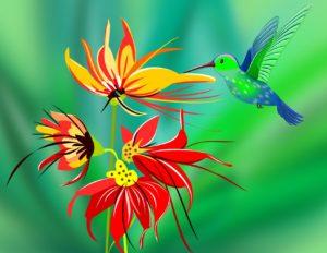 Puzzle Kinder Onlinespiel Kolibri Orchidee spielend lernen Kindergarten Vorschule